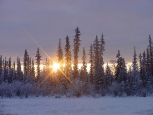 The sun at its highest point in the sky on Dec. 8.