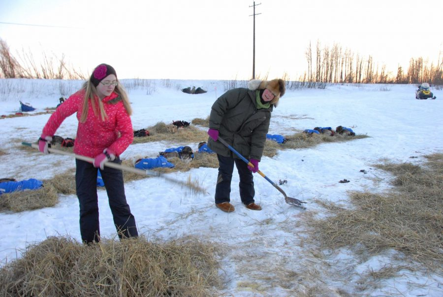 Galena+high+school+student+Shandeigh+Roller+%28left%29+was+one+of+the+volunteers+at+the+Iditarod+helping+maintain+the+area+for+the+mushers.