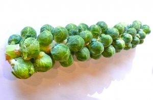 Brussel sprouts, courtesy whataboutthis.biz