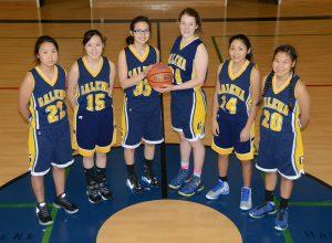 The Galena Lady Hawks junior varsity team.