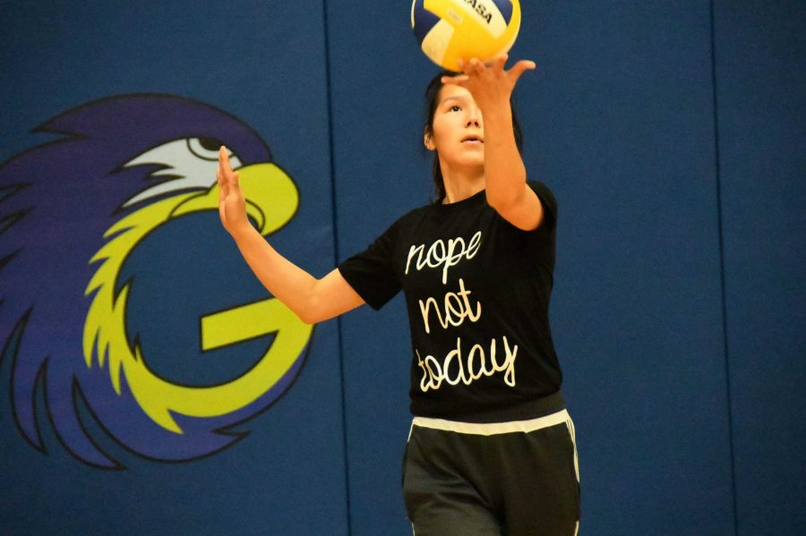 Galena+Hawk+volleyball+player+Leah+Kozevnikoff+practices+during+a+recent+early+morning+in+the+SHS+gym.