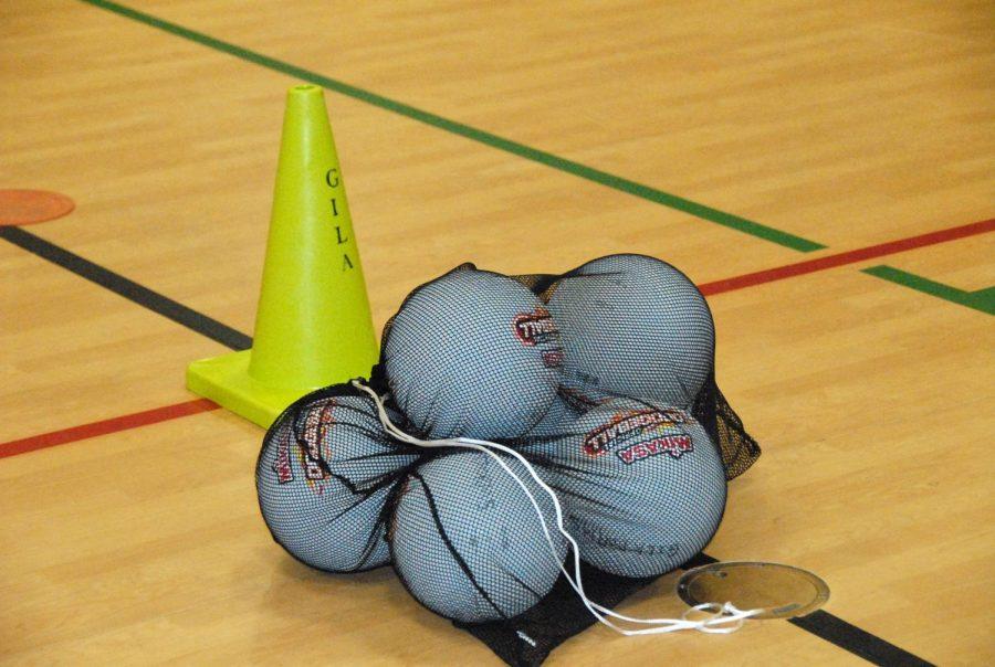20140328-activities-dodgeball-0144
