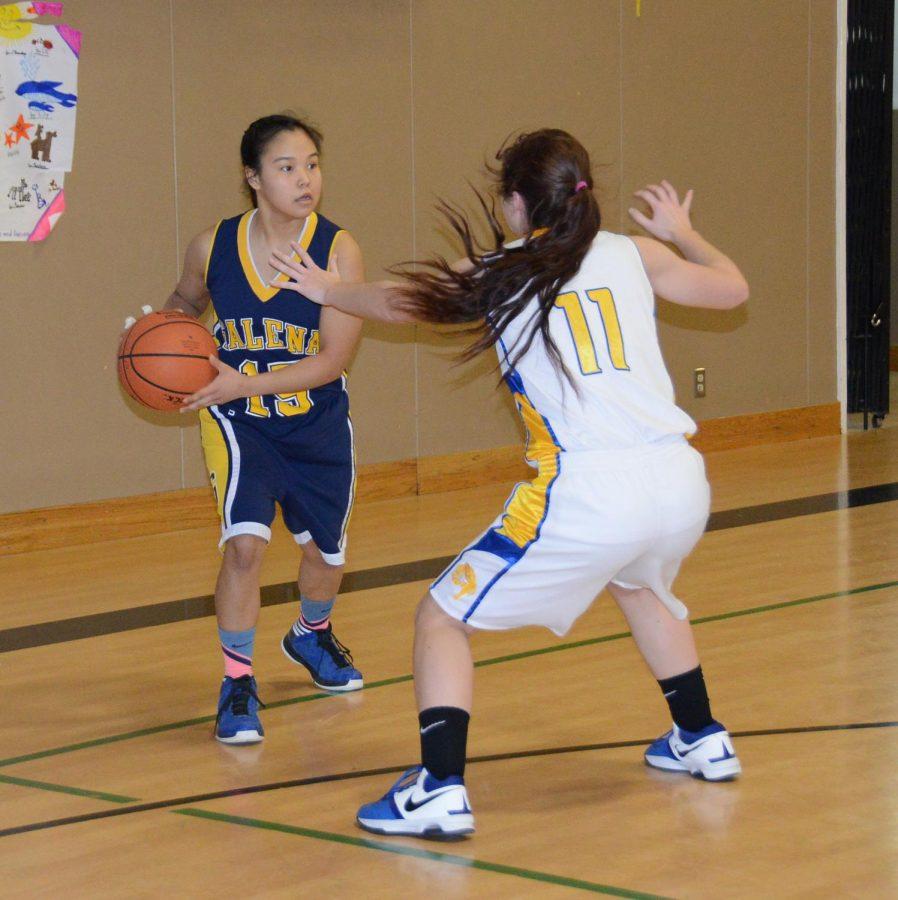 sports-bball-jv_girls-20160213-2590
