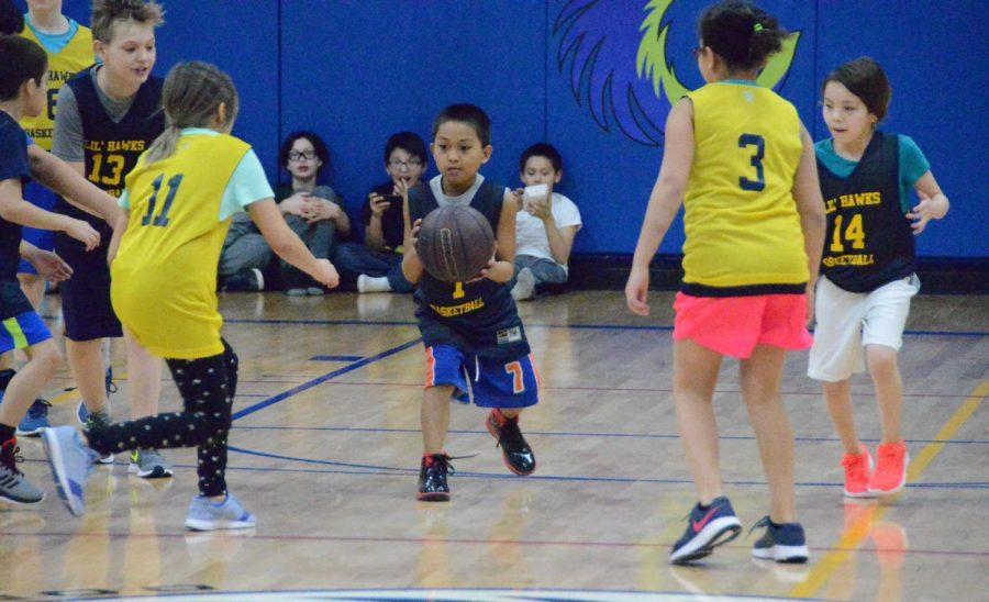 sports-bball-littlehawks-20180302-4494