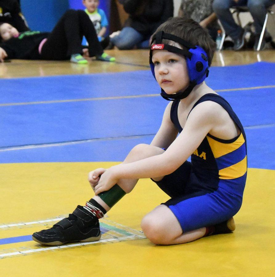 sports-wrestling-little_hawks-20180331-3537