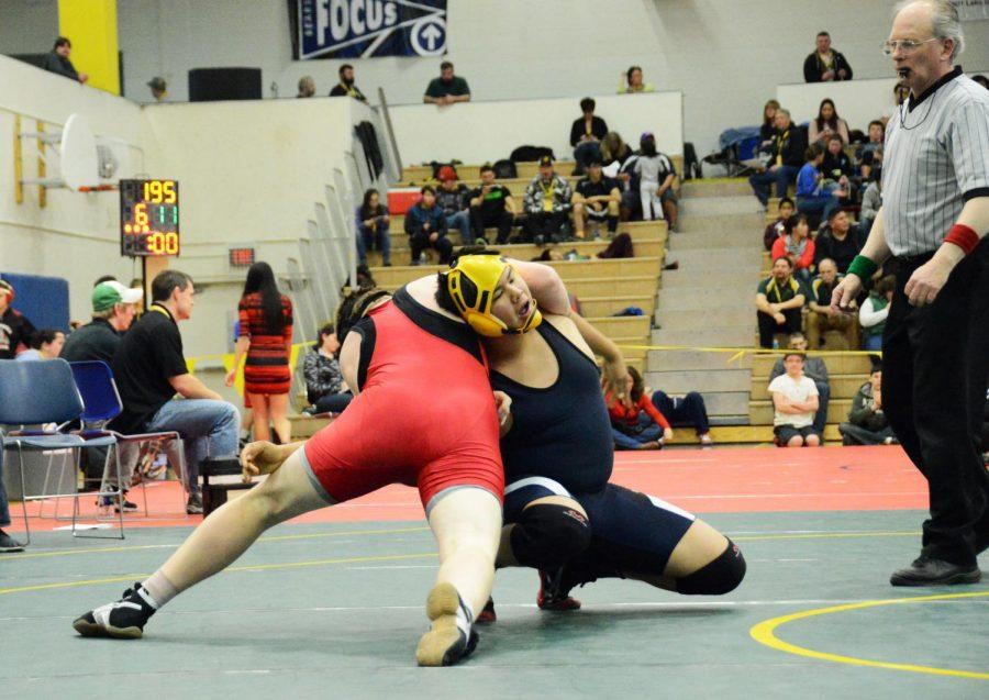 sports-wrestling-state-20141212-2+%288%29
