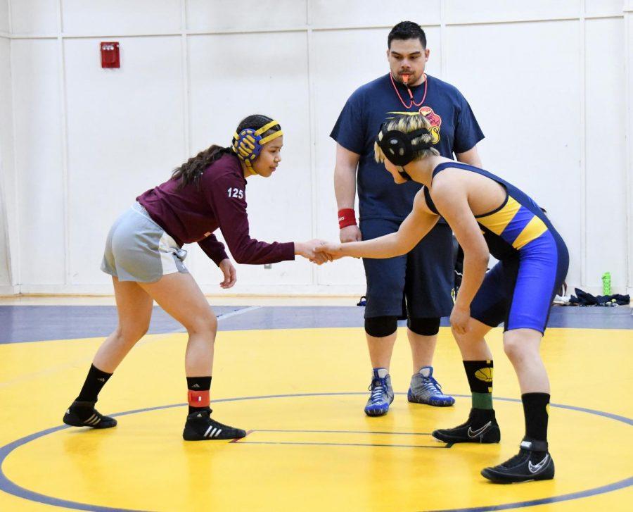 sports-wrestling_GIR-20190330-0018